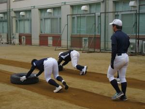 岸和田 高校 野球 部